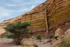 Magmatic dike in the Makhtesh Ramon, Israel